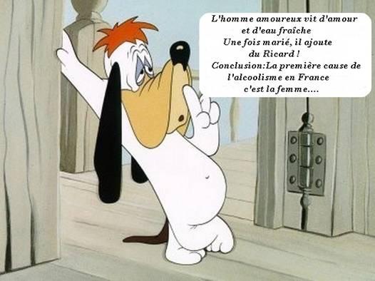 Humour en image ... - Page 37 Image11